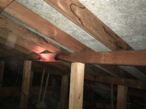 天井裏の点検