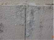 モルタル壁エフロレッセンス(白華)