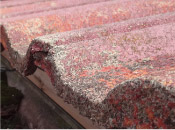 屋根瓦の風化